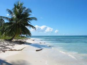 White-sandy-beaches-in-the-Caribbean